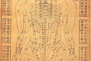 Chinese Human Body Chart